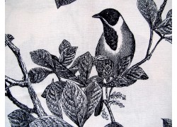 Quiltstoff Vögel schwarz weiß Classic Caskata