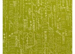 Quiltstoff Text Schrift grün Spring Chicken Patchworkstoff