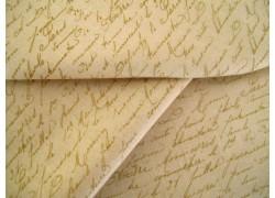 Festive Forest Wilmington Stoff Schrift beige sand