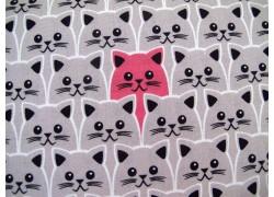 Baumwollstoff Katzen pink grau Kim