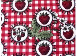 Patchworkstoff Erdbeeren Botanica rot grün
