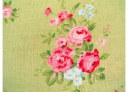 Rosenstoff grün rosa Caroline Designerstoff