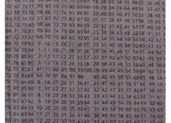 Patchworkstoff Zahlen grau Compositions Quiltstoff